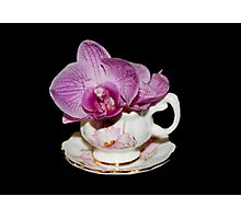 Orchid Still Life Photographic Print