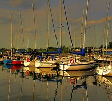 Gimli Harbour!!! by Larry Trupp