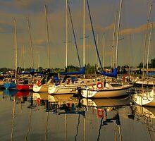 Gimli Harbour!!! by Larry Trupp