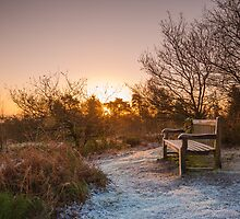 Frosty Sunrise over the Lickey Hills by Verity Milligan