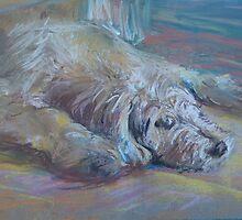 Shaggy Dog by Emma Kaufmann