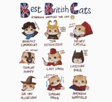 Best British Cats (BBC) by derlaine