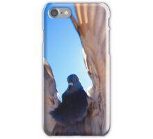 Pigeon Flight iPhone Case/Skin
