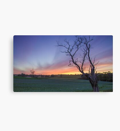New Years Eve Sunset  Canvas Print
