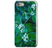 Ice Flower iPhone Case/Skin