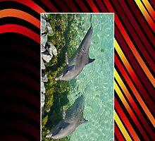 Dolphin Cellphone case 4b by Gotcha29