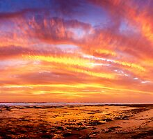 Nature's Sky Show by Julie Begg