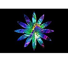 Flower pattern Photographic Print