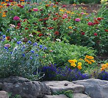 Stone Garden on Cape Breton Island by Myscha Theriault