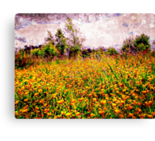 Buttercups in a storm Canvas Print