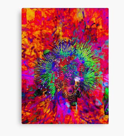 Rainbow Wish Canvas Print