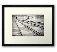 Companion... Framed Print