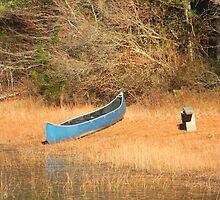 The Forgotten Canoe by CapeCodGiftShop