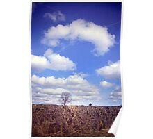 Yorkshire Tree Poster