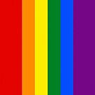 Smartphone Case - Rainbow Flag 1 by Mark Podger