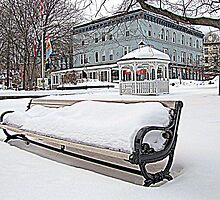 Park Bench in Kingston, NY by Rusty Katchmer