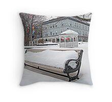 Park Bench in Kingston, NY Throw Pillow