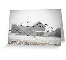 Snow Falling near Ballenger Creek Greeting Card