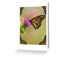 Monarch With Wing Border Greeting Card