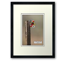 Head for Heights Framed Print