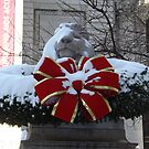 New York Public Library Lion After A Snowfall, New York City by lenspiro