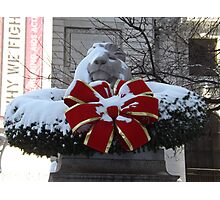 New York Public Library Lion After A Snowfall, New York City Photographic Print