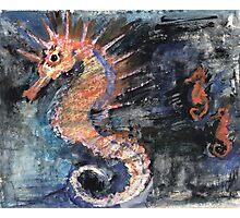 Three Seahorses Photographic Print