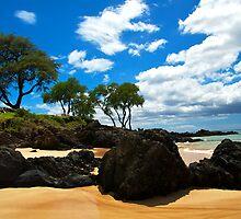 Maui, Hawaii by Mark Iocchelli