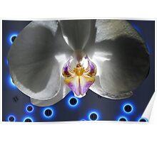 Orchid Alien Pilot White Poster