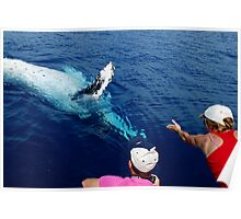 Whale Shaking Hands with Human Poster