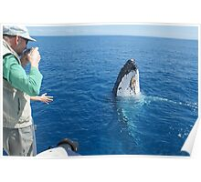Whale looking at us Poster
