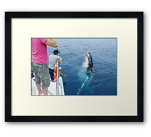 Whale saying Cheese Framed Print