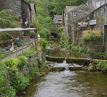 Stock Ghyll, Ambleside, U.K by Pauline Tims