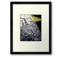 Long wait in the shade Framed Print