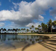 Shadows of Palms - a Lagoon in Waikiki, Honolulu, Hawaii by Georgia Mizuleva