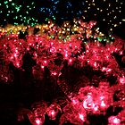 Christmas Lights - Milner Gardens  by rsangsterkelly