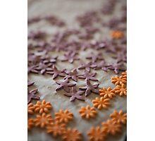 Little flowers .............. Photographic Print