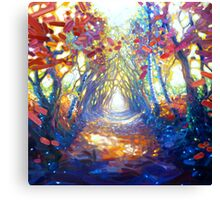 woodland path to somewhere wonderful Canvas Print