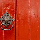 RED DOOR  by Nina  Matthews Photography