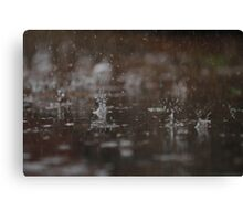 Expected  Canvas Print
