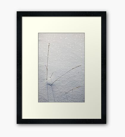 RAW.................. Framed Print