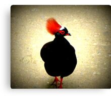 Roul Roul Partridge Canvas Print