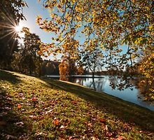 Autumn Sunburst by Gary Clark