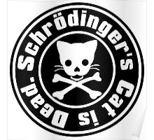 Schrödinger's Cat is Dead. Poster