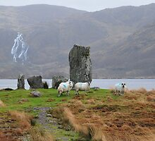 Sheep with stones by JurassicJohn