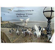 The Birds Banner Poster