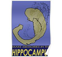 Hippocampus Travel Poster Poster
