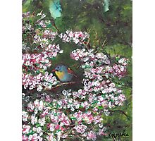 Ode to a Nightingale Photographic Print