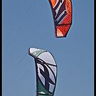 Twin Kites by Warren. A. Williams