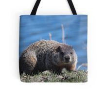 Groundhog Pose Tote Bag